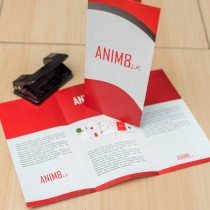 Double Sided A4 Fan Fold Brochure