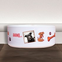 Doggy Food Bowl