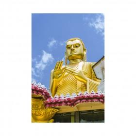 The Golden Buddha