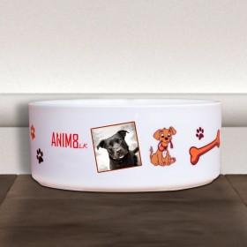 Doggy Food Bowl